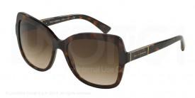 Dolce & Gabbana 4244 502 13