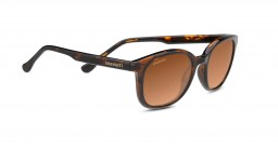 Serengeti Mara 8773 Polarized