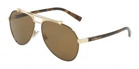 Dolce & Gabbana 2189 132083 Polarizada