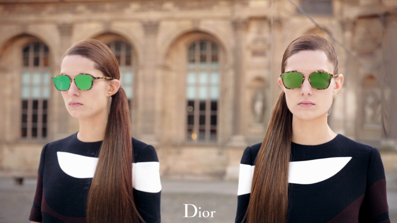 Gafas de sol Dior Abstract 00F 9S